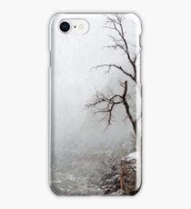 Zion Snowstorm iPhone Case/Skin