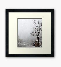Zion Snowstorm Framed Print
