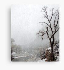 Zion Snowstorm Canvas Print