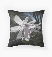 Pinhole Magic Throw Pillow