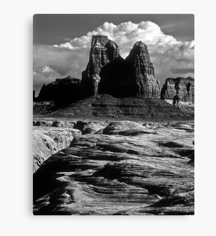 Hard Country Canvas Print