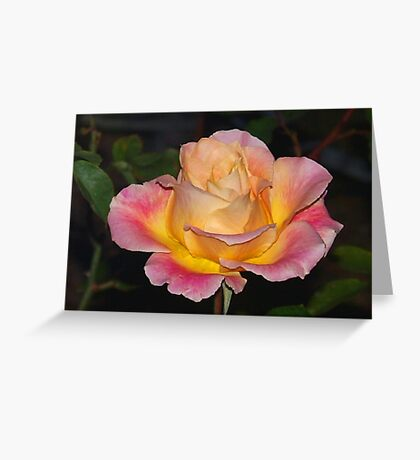 Sunshine cup Greeting Card