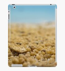 Salt and Pepper iPad Case/Skin