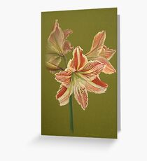 Prime of Life 1 Greeting Card