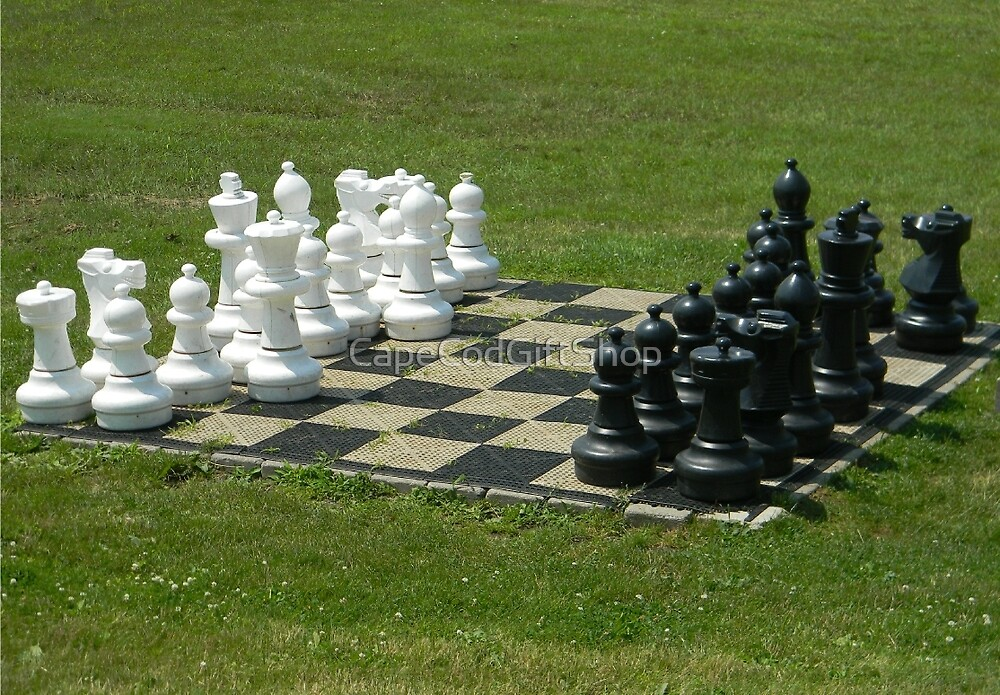Chess Anyone by CapeCodGiftShop