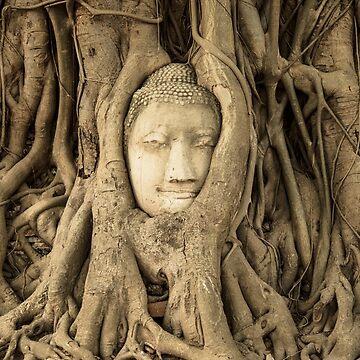 Buddah Tree by madebyrina