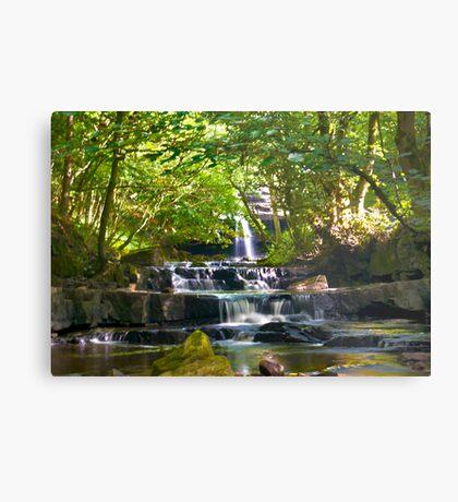 Summerhill Falls Metal Print