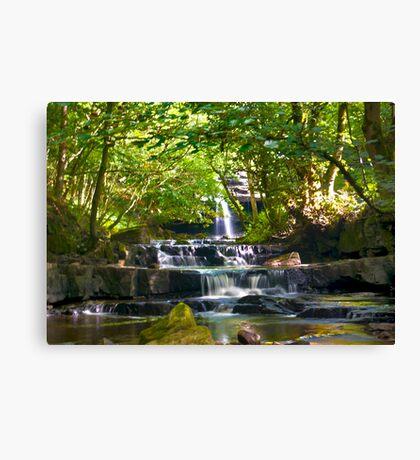 Summerhill Falls Canvas Print