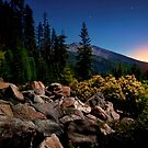 The High Cascades ~ Diamond Peak ~ by Charles & Patricia   Harkins ~ Picture Oregon