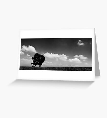standing alone tree Greeting Card