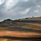 Cracoe Monument Across Embsay Moor by SteveMG