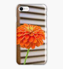RED FLOWER WOODEN SHUTTERS iPhone Case/Skin