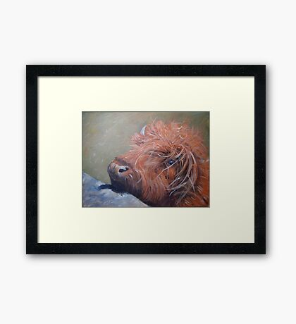ickle hairy cow Framed Print