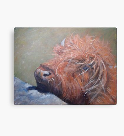 ickle hairy cow Metal Print