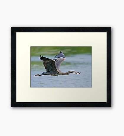 Get your own! Framed Print