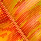 Large Leaf Background  by DearMsWildOne