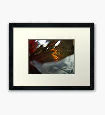 Catch & Release Framed Print