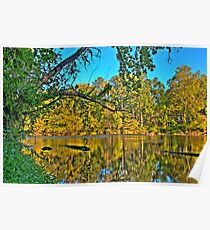 HDR - River and Trees Poster