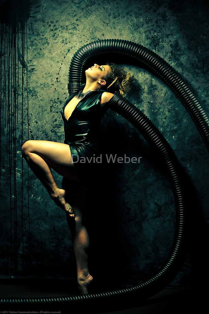 Black Widow 2 by David Weber