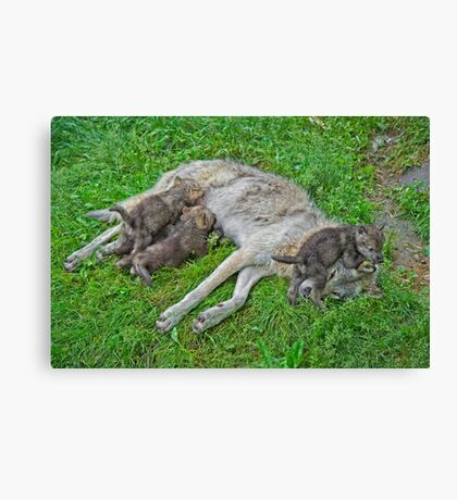 Quality Time with Mom Canvas Print