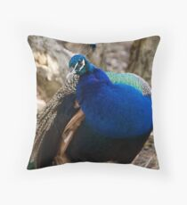 Getting Ready for Spring Dance Throw Pillow