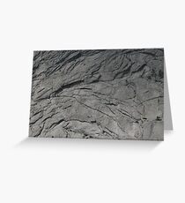 Gray Scale Greeting Card