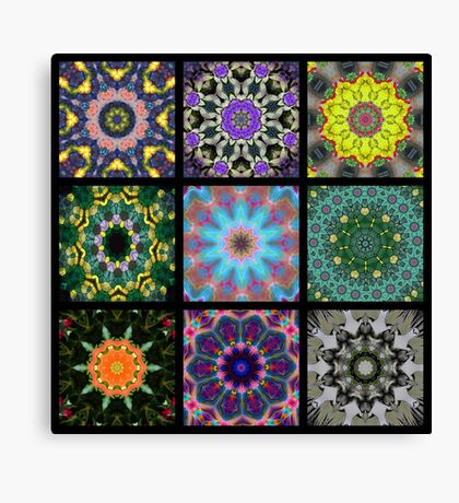 A group of Kaleidoscopes Canvas Print
