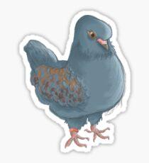 Pigeon Sticker