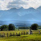 Mountain View by Leslie van de Ligt