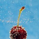 Cherry Delight by Malcolm Katon