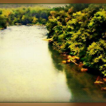 The Chattahoochee River - Marietta, Ga by Happyhead64