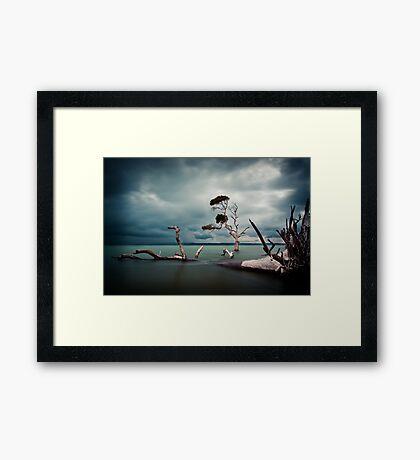 Lonesome (Moreton Bay, Queensland) Framed Print