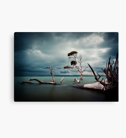Lonesome (Moreton Bay, Queensland) Canvas Print