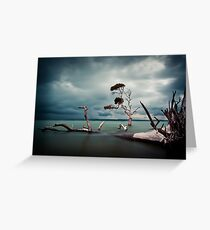 Lonesome (Moreton Bay, Queensland) Greeting Card