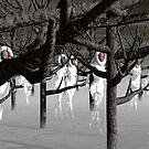 Ghostly Presence by Ann Morgan