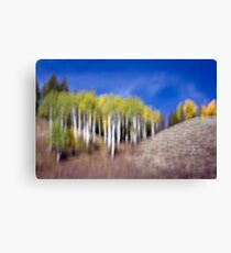 Shapes & Colors of Fall Canvas Print