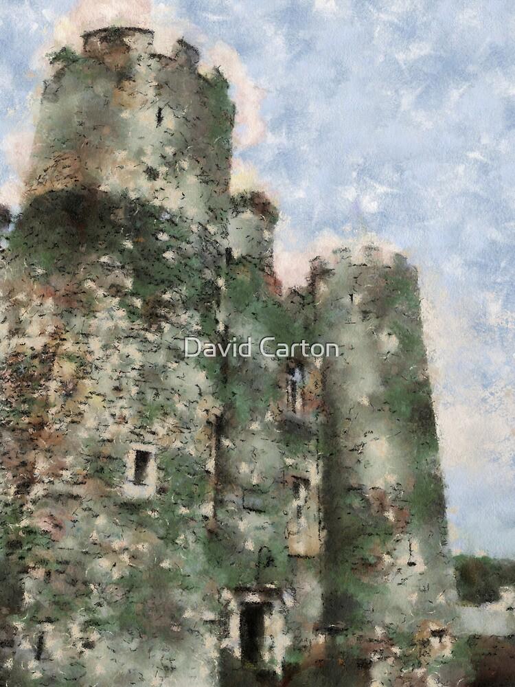Enniscorthy castle, Wexford, Ireland by David Carton