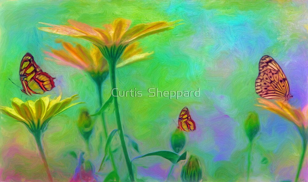 The Essence of Summer by Curtis  Sheppard