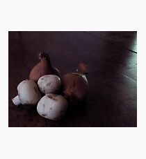 French Shallots and Mushrooms Photographic Print