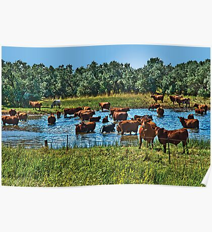 Happy Hour at the Watering Hole Poster
