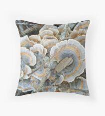 Turkey Tail Shelf Fungus - Trametes versicolor Throw Pillow