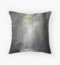 Mist at Grizzly Falls Throw Pillow