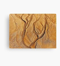Tree in a sand forest Canvas Print