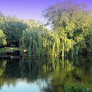 River  Avon at Stratford by karenkirkham