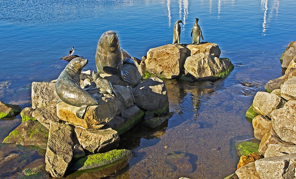 Seals and Penguins of Antarctica by TonyCrehan