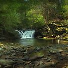 Lower Twin Falls Panorama September 2011 by Aaron Campbell