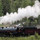 Whoo Hooo ---- #2816 Steam  Engine To Canmore by Leslie van de Ligt