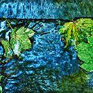 Leaf Chantra by Richard Jackson