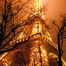 Misty Eiffel Tower, Paris  by Alberto  DeJesus
