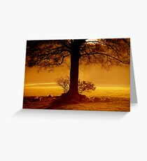 """THE GOLDEN HOUR"" Greeting Card"